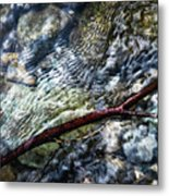 Clear Water Level With Twigs Metal Print