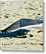 Cleared For Take-off Metal Print
