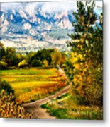 Clearly Colorado Metal Print
