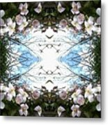 Clematis Sky Window Metal Print