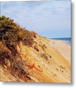 Cliff At Marconi Beach Metal Print