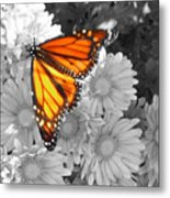 Cliff House Butterfly Metal Print