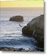 Cliff Jumping To Surf Metal Print