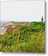 Cliff Off The Shores Of Martha Vineyard Metal Print