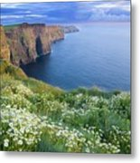 Cliffs Of Moher, Co Clare, Ireland Metal Print