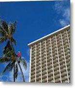 Climbing A Palm Tree Metal Print