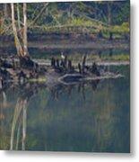 Clinch River Beauty Metal Print