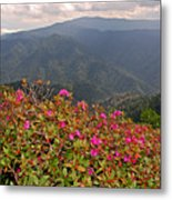 Clingman's Dome From Cliff Top Metal Print
