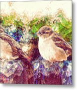 Close Encounters Of The Bird Kind Metal Print