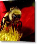 Close Up Bee Metal Print