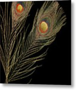 Close Up Of An Abstract Peacock Feather Metal Print