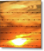 Close-up Of Barbed Wire At Sunset  Metal Print