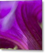 Close View Of Purple Petunia Metal Print