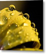 Close View Of Water Droplets Metal Print