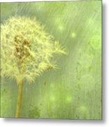 Closeup Of Dandelion With Seeds Metal Print