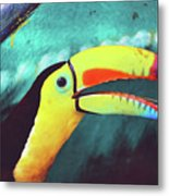 Closeup Portrait Of A Colorful And Exotic Toucan Bird Against Blue Background Nicaragua Metal Print