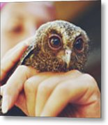 Closeup Portrait Of A Girl Holding And Tending A Small Baby Owl In Her Hands Metal Print