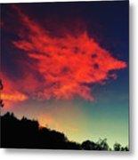 Cloud And Tree Metal Print