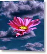 Cloud Flower.  Metal Print