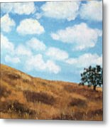 Cloud Shadows Metal Print