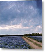 Cloud Vortex Over Bluebonnets At Muleshoe Bend Recreation Area - Spicewood Texas Hill Country Metal Print