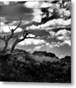 Clouds And A Tree Baw Metal Print