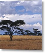 Clouds Over The Masai Mara Metal Print
