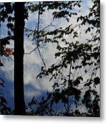Clouds Tree Water Metal Print