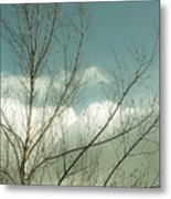 Cloudy Blue Sky Through Tree Top No 1 Metal Print