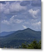 Cloudy Day In Virginia Metal Print