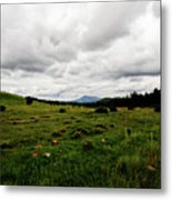 Cloudy Meadow Metal Print