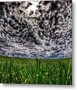 Cloudy Sky's Grassy Field Metal Print