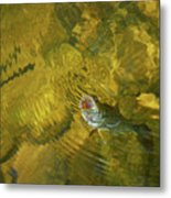 Clouser Smallmouth Metal Print