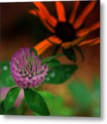 Clover In My Yard Metal Print