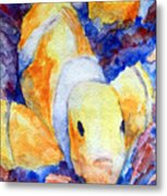 Clown Fish Metal Print