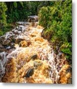 Coal Creek Rapids Metal Print