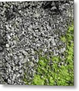 Coast - Abstract Metal Print