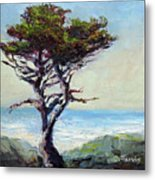 Coast Cypress Metal Print