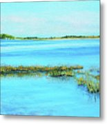 Coastal River Metal Print