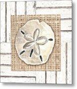 Coastal Shells 1 Metal Print