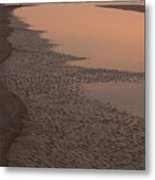 Coastal Strand At Dawn On Hunting Island Metal Print