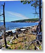 Coastline At Otter Point 1 Metal Print