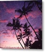 Coastline Palms Metal Print