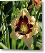 coat and tie Daylily Metal Print