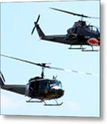 Cobra And Huey Metal Print