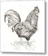 Cock Of The Walk Metal Print