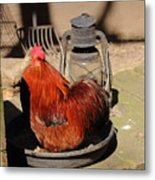 Cockerel And Storm Lamp Metal Print
