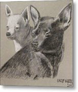 Coco And Rudy Metal Print