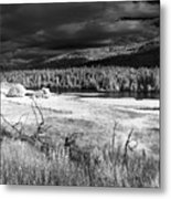 Cocolala Creek Metal Print