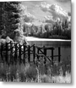 Cocolala Creek Slough 2 Metal Print